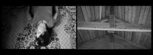 Marika Orenius: Domestic Disorder (2012)