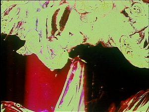 Ruutsalo: Two Chickens (1963)